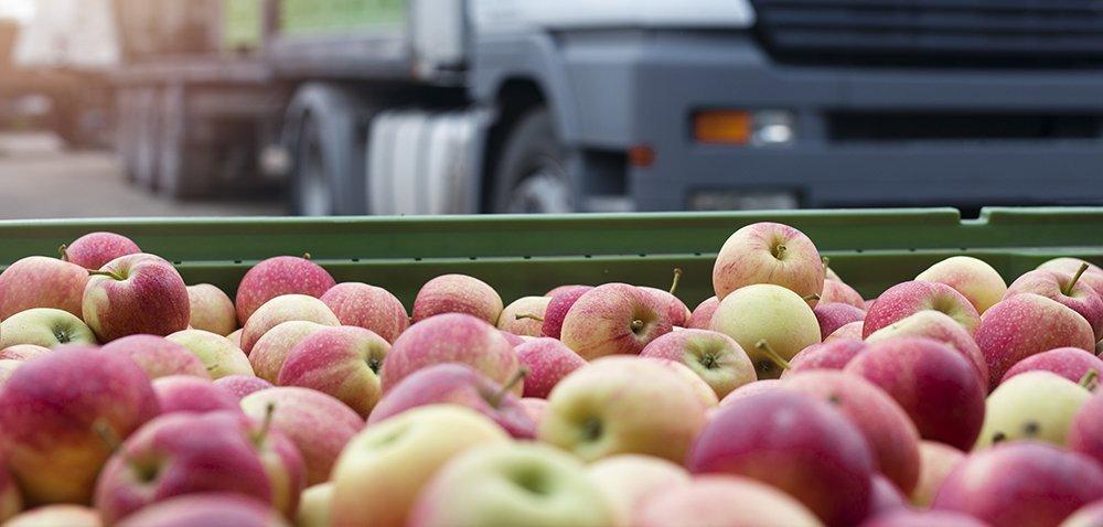 Handel zagraniczny żywnością: czy Polska utrzyma nadwyżkę?