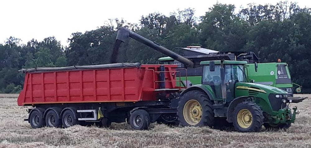 Cena rzepaku 2021 najwyższa od 9lat! Aco zcenami zbóż?