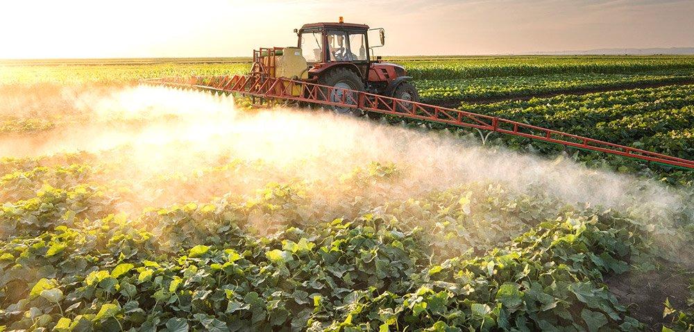Środki ochrony roślin zawierające desmedifam zakazane [AKTUALNOŚCI]