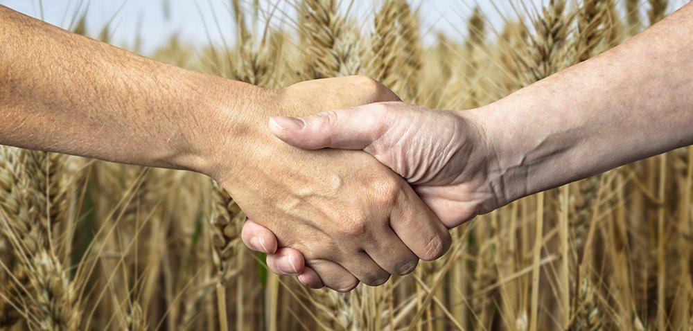 Ceny referencyjne wzmocnią pozycję rolnika? [AKTUALNOŚCI]