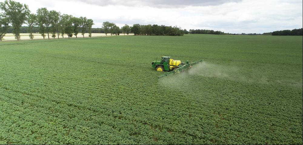 Zwalczanie zarazy ziemniaka skuteczniejsze niż dotychczas!