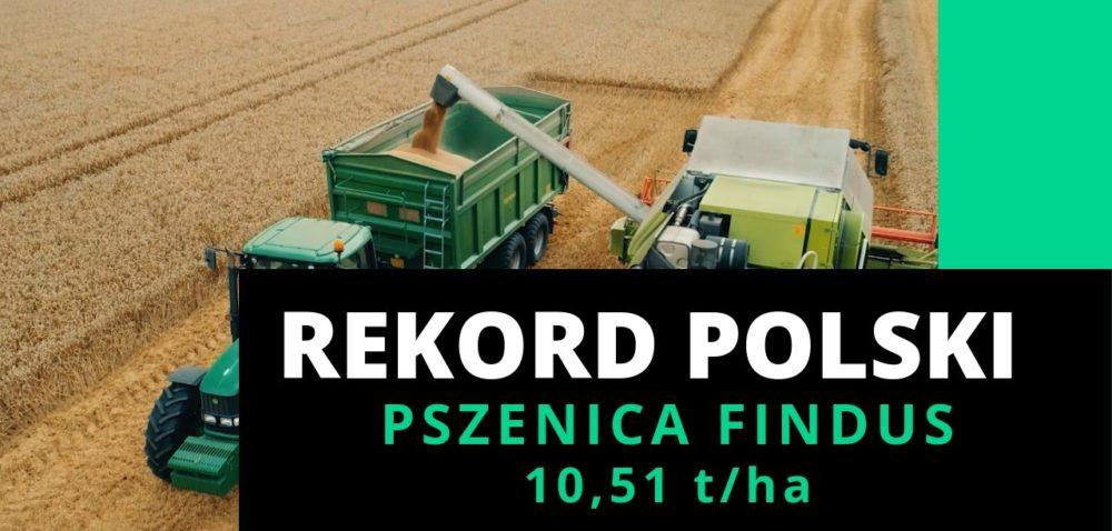 Nowy rekord Polski na największy plon pszenicy ozimej zhektara