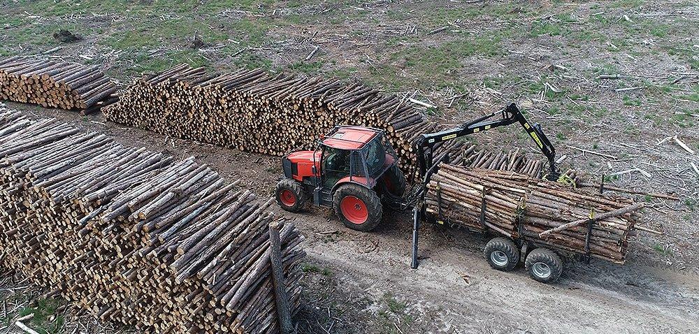 Jaki ciągnik najlepszy do ochrony lasu?