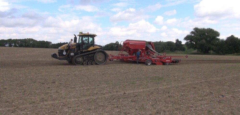 Rolnicy sieją rzepak – najczęściej mieszańcowy