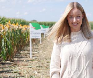 Na Dolnym Śląsku kukurydza pokazała klasę! [WIDEO]