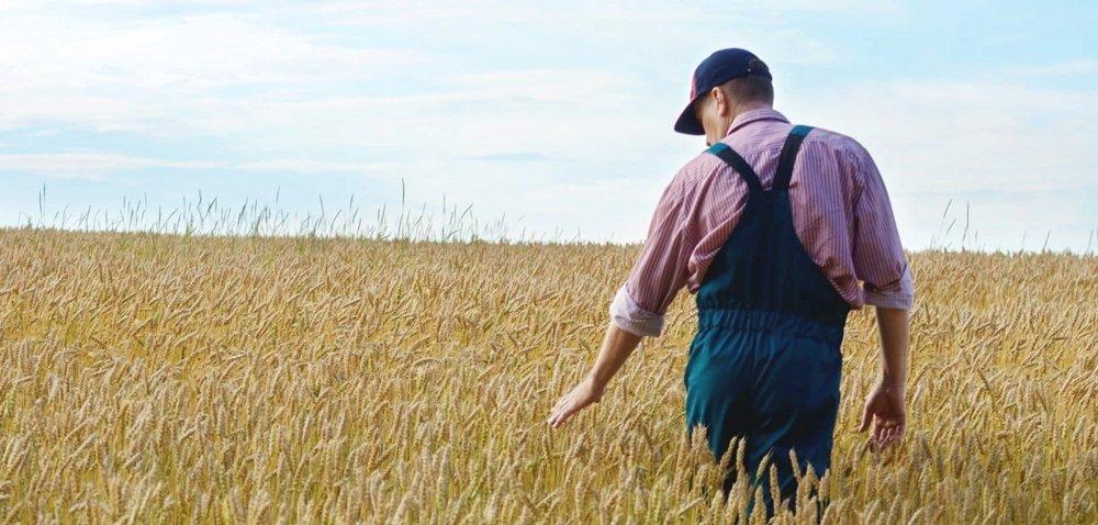 Młody rolnik 2020: jaka przyszłość czeka premie zPROW?
