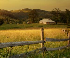 Premia za przekazanie gospodarstwa rolnego nadal do wzięcia