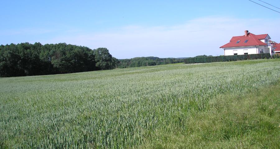 System dla małych gospodarstw – wystąpienie za pomocą eWniosku