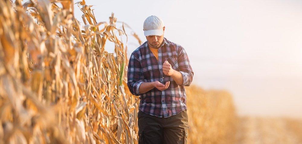 Współcześni rolnicy myślą tylko osobie? Zaskakujące wyniki raportu