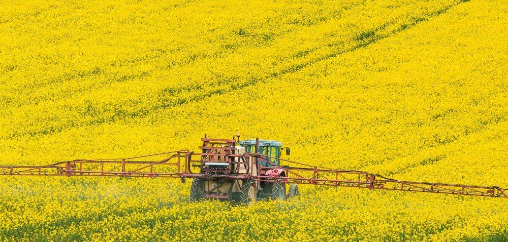 Chloropiryfos wycofany. Jak teraz chronić rośliny przed szkodnikami?