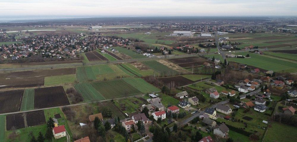 Rolnictwo wPolsce w2020 r. – jakie prognozy?