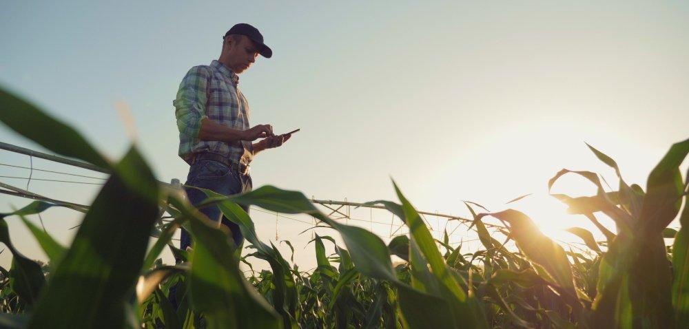Kiedy nabór na młodego rolnika 2020? Informacje w100 sekund