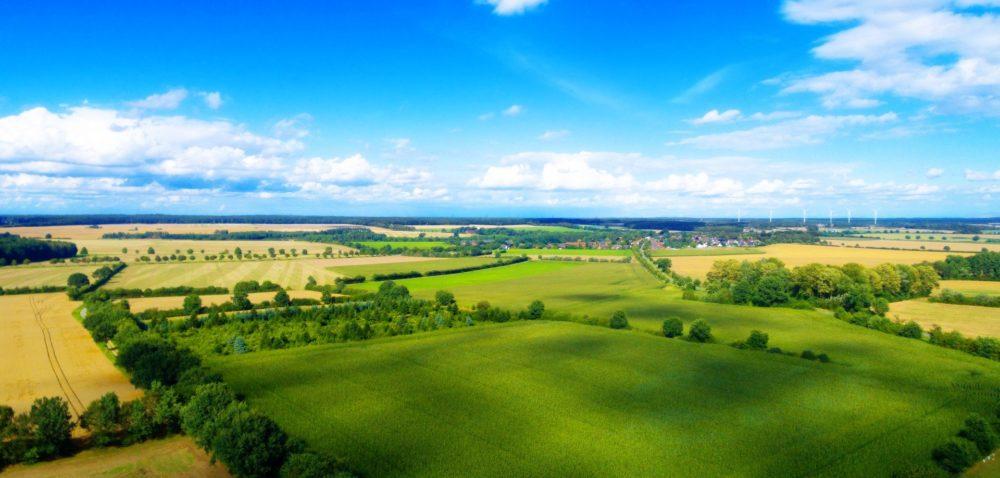 eRolnik – sprzedaż nieruchomości rolnych poprzez nowy portal