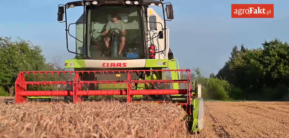 Zbiory zbóż wPolsce 2020 na finiszu. Podsumowanie żniw