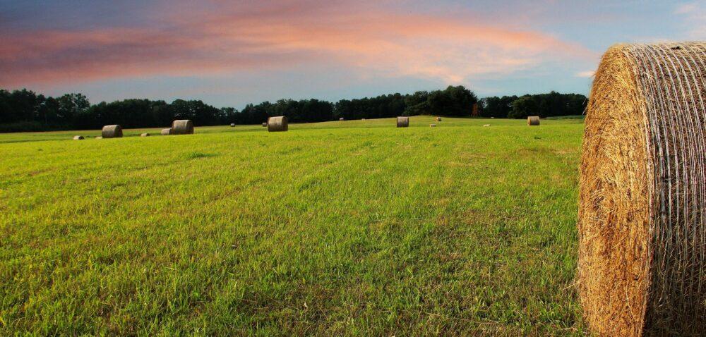 Podatek rolny na 2021 r.