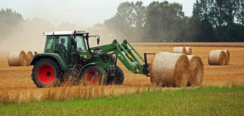 Młody rolnik 2021 – jakie zmiany szykuje resort rolnictwa?