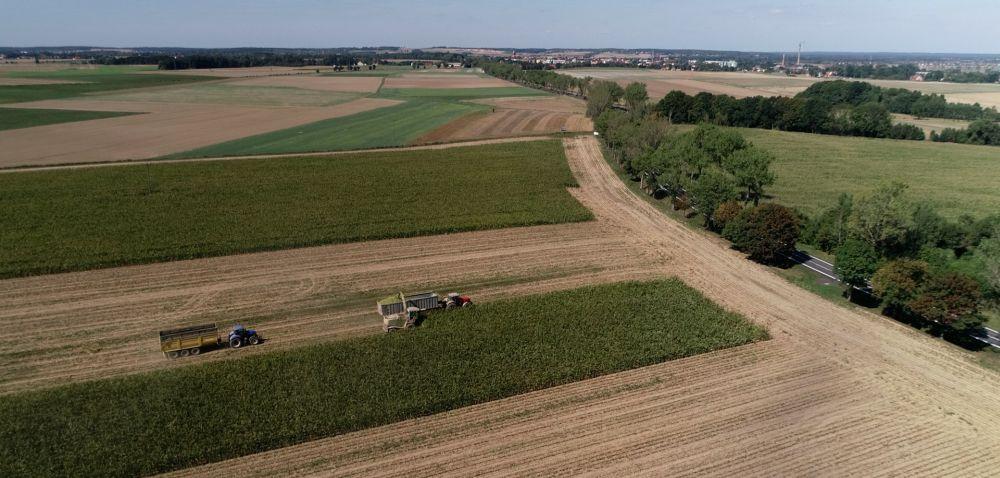 Rolnicy pozytywnie oceniają 2020 rok