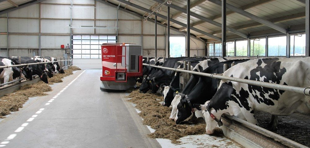 Ceny mleka 2021 spadły. Koniec dobrej passy? Sprawdź!