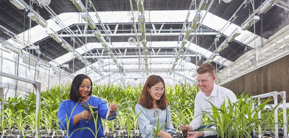 Bayer dynamizuje rolnictwo zrównoważone poprzez model innowacyjnej współpracy