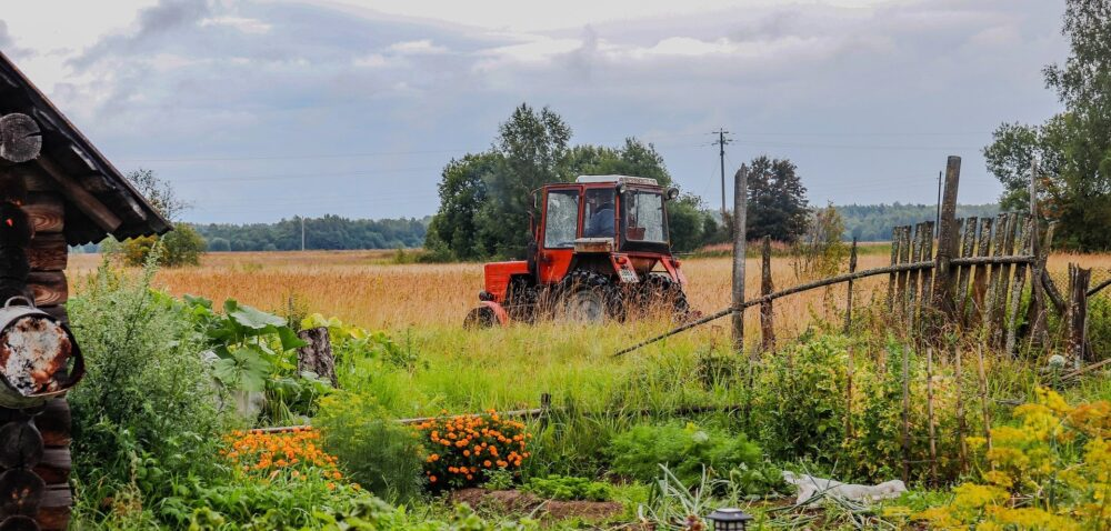 Restrukturyzacja małych gospodarstw nabór 2021 – wymagane dokumenty