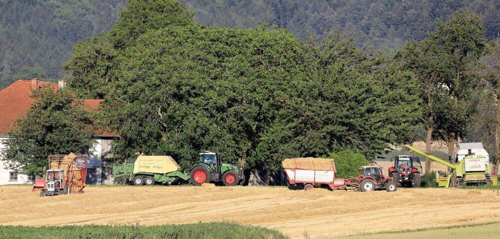 Rolnicze spółdzielnie produkcyjne jako wielorodzinne gospodarstwa rolne?