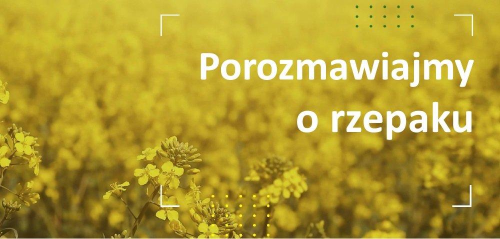 Pomiędzy okularami przeciwsłonecznymi aodzieżą termiczną, czyli rzepak kontra polska wiosna 2021