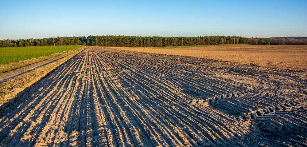 Ceny działek rolnych wgórę! Boom na działki trwa!