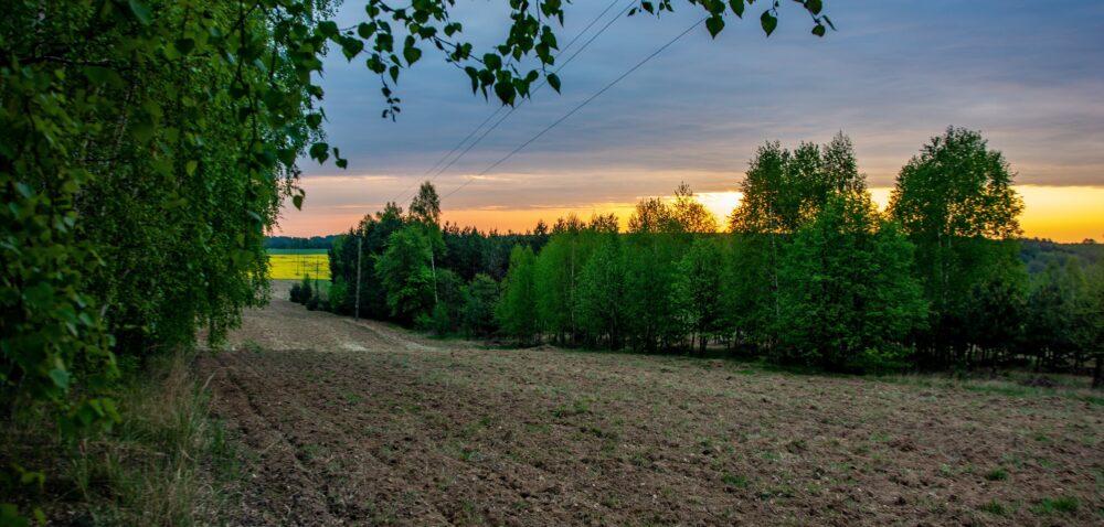 Średnie ceny gruntów rolnych. Gdzie odnotowano największe podwyżki?