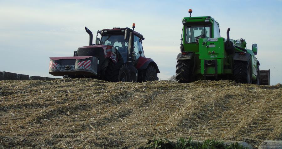Pomoc dla grup producentów rolnych. 100 tys. euro rocznie przez 5lat!