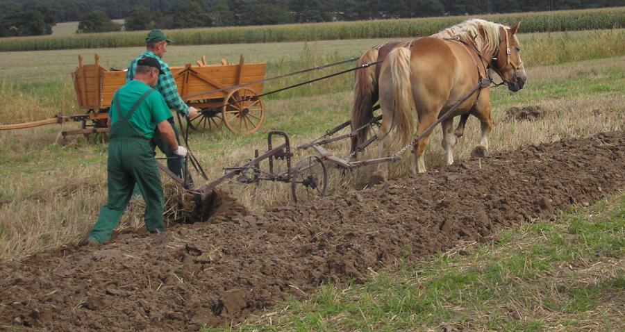 Restrukturyzacja gospodarstw rolnych, ostatni dzwonek!