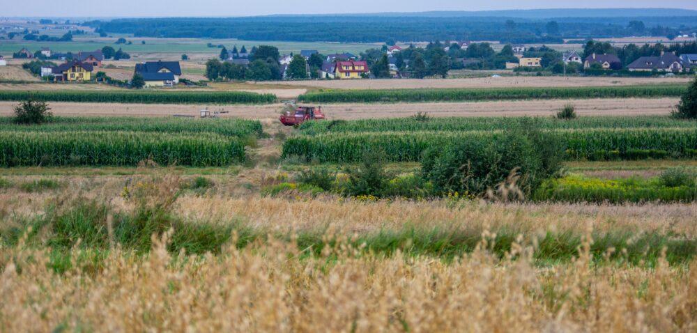 Gospodarstwa rodzinne skorzystają na Zielonym Ładzie? Sprawdź!