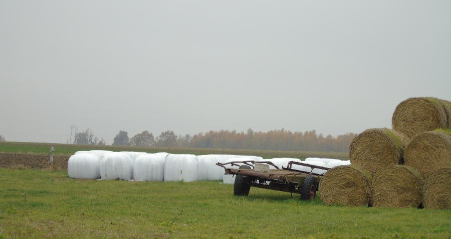 Dofinansowanie do utylizacji folii rolniczych. Przypilnujcie swoją gminę!