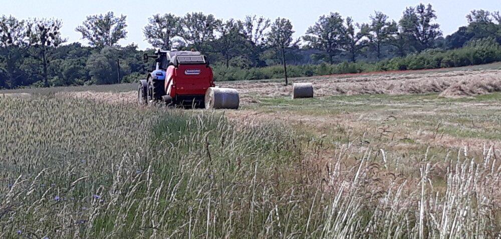 Dotacje unijne dla rolników na zakup maszyn. Jaki wybrać program?