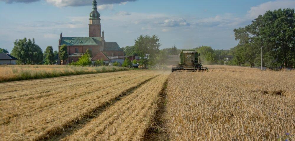 Ustawa orodzinnych gospodarstwach rolnych wielką reformą polskiej wsi?