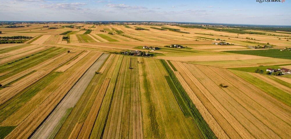 Więcej ziemi dla rolników wramach Polskiego Ładu. Sprawdź szczegóły!