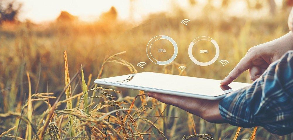 AgriiBaza wspiera rolników wpodejmowaniu decyzji. Dowiedz się więcej!