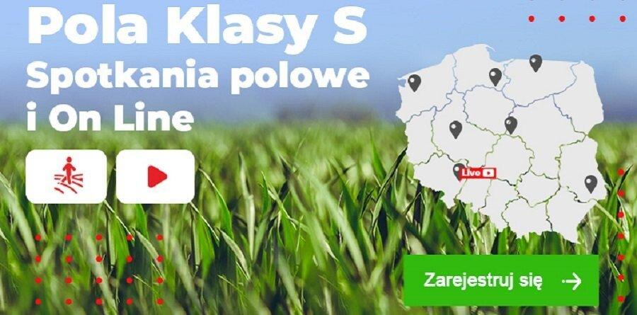 Pola Klasy S Kukurydza 2021 organizowane przez firmę Syngenta