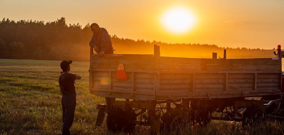 Tworzenie grup producentów iorganizacji producentów 2021