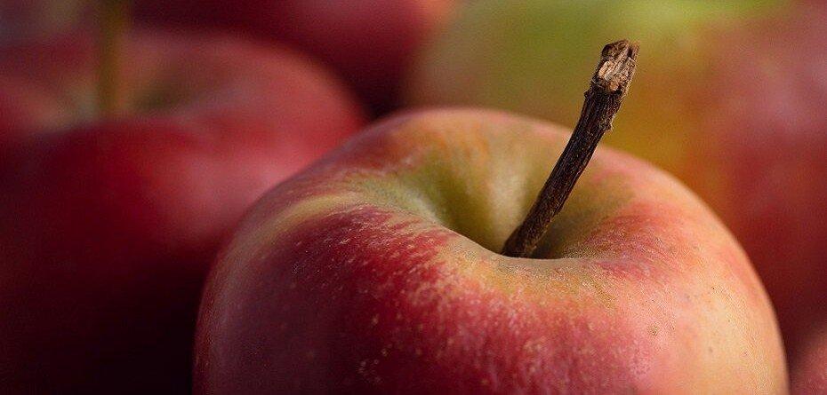 Ceny jabłek wskupach. UOKiK skontroluje ceny isposób ich ustalania