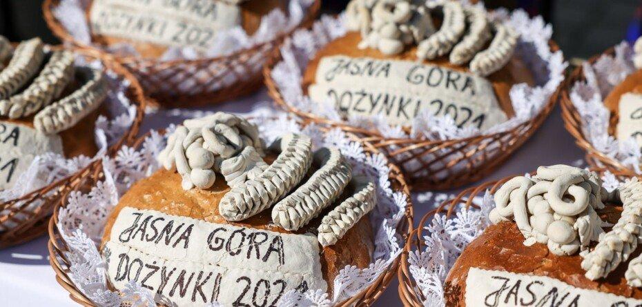 Dożynki Jasnogórskie 2021. Polscy rolnicy ukarani niższymi dopłatami?