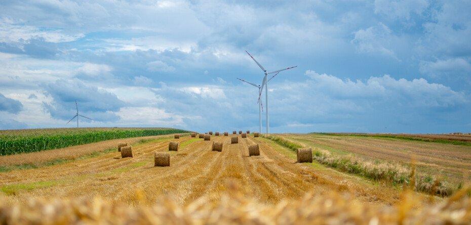 Zielony Ład – jakie niesie zagrożenia? Czeka nas spadek produkcji iwzrost cen?