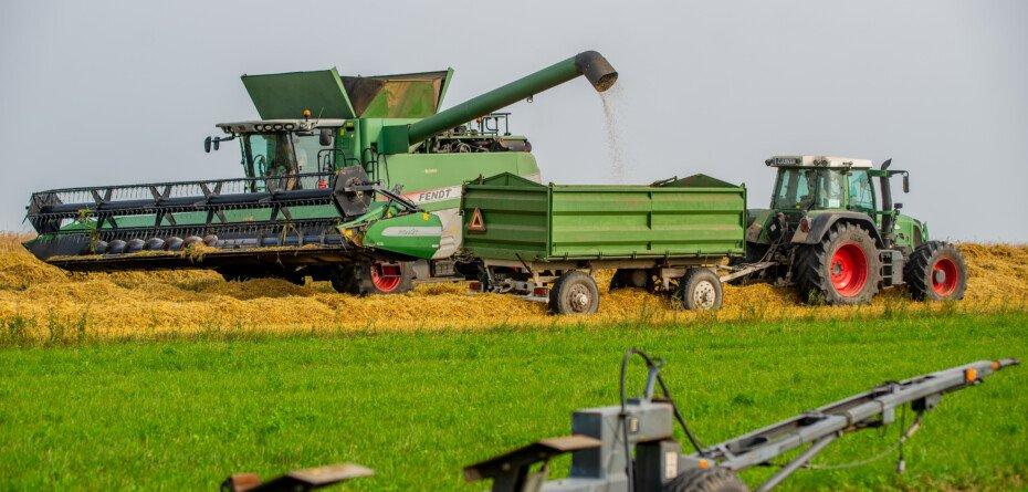 Opłacalność produkcji rolnej 2021. Rolnicy zarobią mniej niż przed rokiem?