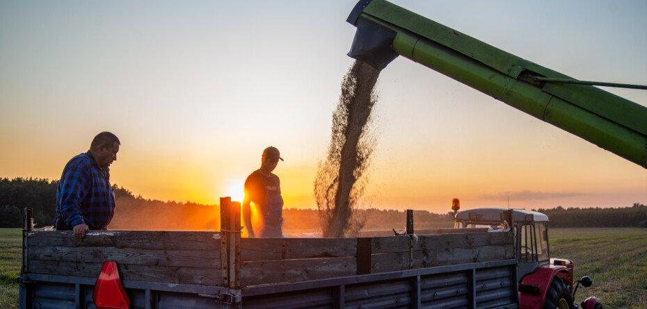 Tworzenie grup producentów 2021 – wkrótce nabór wniosków. Sprawdź!
