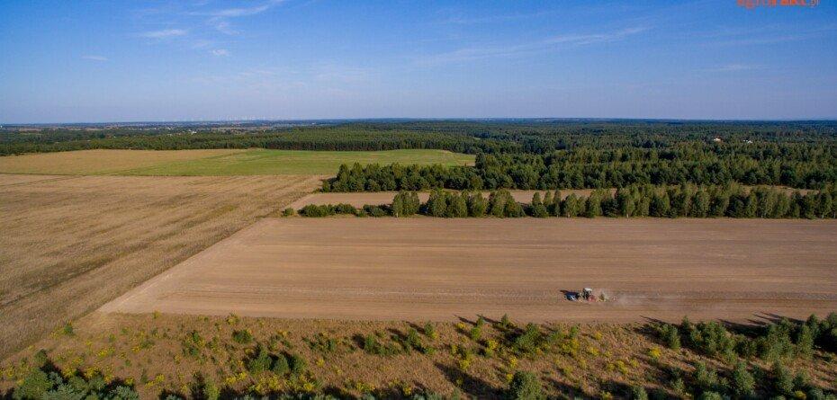 Licytacje komornicze gruntów rolnych – będą zmiany wprzepisach?