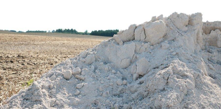 Zabieg wapnowania, czyli jak przygotować glebę pod uprawę pszenicy