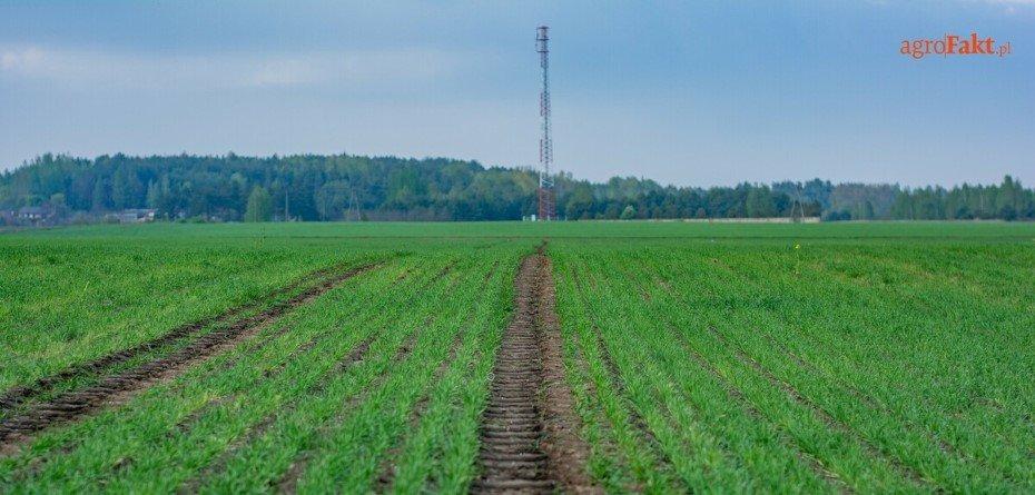 Ziemia rolna nie dla rolników?! Nowy biznes wNowym Ładzie?